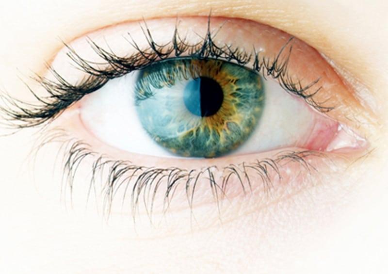 codice sconto vision direct