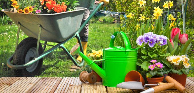 Peraga Garden Recensioni