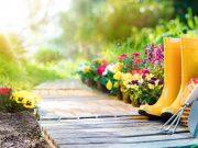 Peraga Garden - Il garden numero 1 in Italia